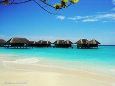 Awesome beach houses