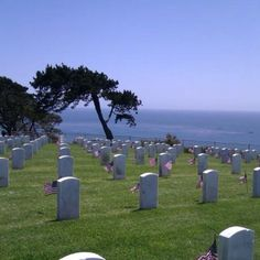 Ft. Rosecrans cemetery in Pt. Loma (San Diego)... Will never forget those who have given their lives so we can be free, on Memorial Day or any other day.