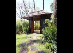BALI LODGE Safari Lodge