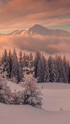Beautiful Winter Landscape - Wallpaper for iPhone and Smartphone