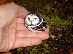 SAWWHET OWL painted rock terrarium accent moss pot by RockArtiste