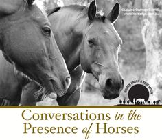 Conversations in the Presence of Horses | Equine Assisted Psychotherapy