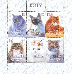 The Missive Maven: New cat stamps from Poland