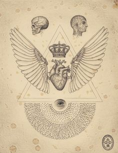 The soul of science / Sacred Geometry <3: