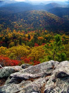 Autumn, Flatside Wilderness, Ouachita National Forest, about 50 miles west of Little Rock, Arkansas