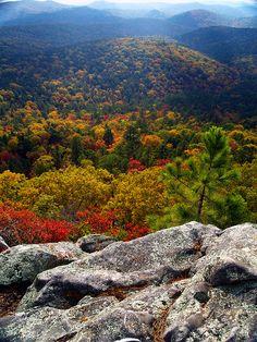 Autumn, Flatside Wilderness, Ouachita National Forest, about 50 miles west of Little Rock, Arkansas