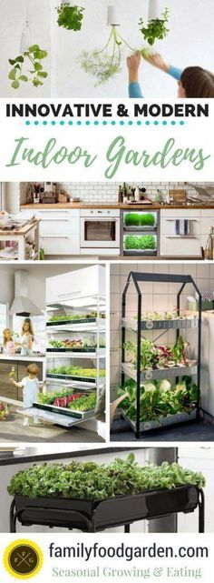 Indoor Gardening: Ideas to Grow Food Inside #OrganicGardening