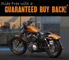 2014 Harley-Davidson® Sportster XL883N - Sportster® Iron 883™