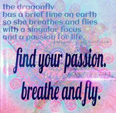 Dragonfly totem: Symbol of grace, passion, life purpose, transformation.