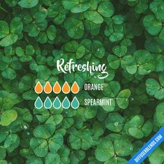 Refreshing Diffuser Blend