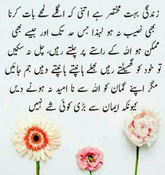 Poetry Books, Urdu Quotes, Instagram Accounts, Islamic