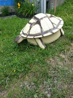 Turtle I made from a tire.