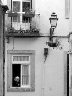 À Janela | Fotografia de José Daniel Ferreira | Olhares.com
