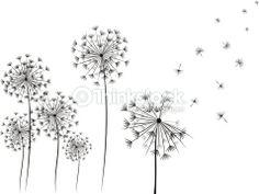 Dandelion hand drawn illustration on white background.- Dandelion hand drawn illustration on white background. Simple and… Dandelion - Bracelete Tattoo, Illustrations, Illustration Art, Dandelion Drawing, Simple Doodles, Free Vector Art, Vector Graphics, Vector Vector, Vector Design