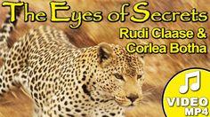 Home of Leopard.tv Wildlife Magazine, Shayamanzi wildlife ranch and wildlife music Majestic Animals, Theme Song, Famous Artists, Bobby, The Secret, Mystery, Van, Songs, Eyes