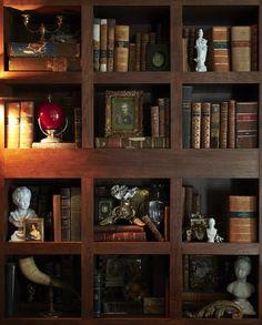 Richly styled bookshelves by Euro Trash, Jacksonville, Illinois