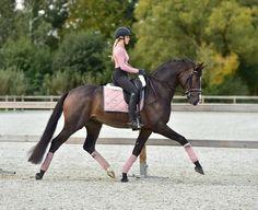 Dressage Saddle, Dressage Horses, Draft Horses, Equestrian Outfits, Equestrian Style, Equestrian Problems, Equestrian Fashion, Cute Horses, Beautiful Horses