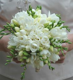Sweet white freesia make for a beautiful bouquet! Freesia are fragrant and provide wonderful color. Shop freesia in a variety of eye-catching colors a. Freesia Wedding Bouquet, White Wedding Bouquets, Bride Bouquets, Floral Wedding, Flower Bouquets, Purple Bouquets, Purple Wedding, Orchid Bridal Bouquets, Wedding Simple