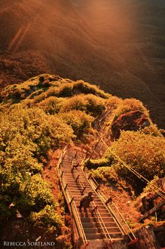 Stairway from Heaven.  Adam´s Peak, Sri Lanka - one day I'll climb those five thousand plus steps & watch the sunrise while standing next to Adam's footprint!!!