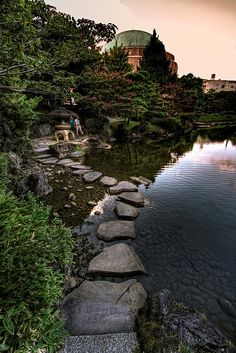 Stepping stones and stone lantern on the grounds of the Kyu-Yasuda Teien gardens in Ryogoku, Tokyo. by Jon Sheer