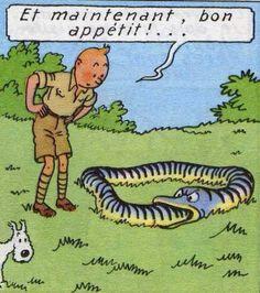 Tintin - Hergé.
