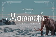 DLOLLEYS HELP: Mammoth Free Font