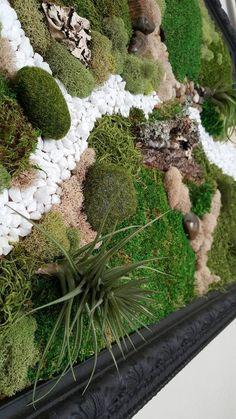 Items similar to Wall Moss Art Wall Garden Real Preserved Moss Care Free on Etsy Moss Wall Art, Moss Art, Vertical Garden Wall, Vertical Gardens, Moss Decor, Succulents Garden, Moss Garden, Succulent Planters, Garden Paths