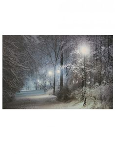 Winter Scene Backdrop #1