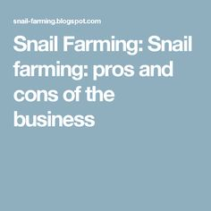 Snail Farming: Snail farming: pros and cons of the business