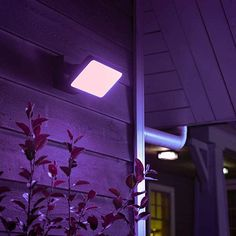 Buy Philips Hue White and Colour Ambiance Discover LED Outdoor Floodlight, Black from our Garden & Outdoor Lighting range at John Lewis & Partners. Smartphone, Philips Hue, Led Module, Fashion Lighting, Shades Of White, Incandescent Bulbs, White Light, Outdoor Lighting, Outdoor Gardens