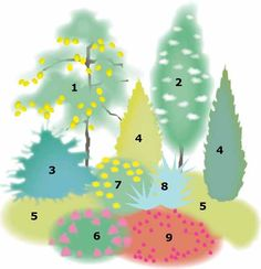 Aurinko kuiva suunnitelma Garden, Garten, Lawn And Garden, Gardens, Gardening, Outdoor, Yard, Tuin