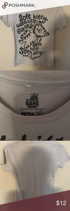 """Big Bang Theory shirt Cute, soft """"Soft Kitty"""" shirt with lyrics from the Big Bang theory on it. In good condition. No rips, tears or stains Tops Tees - Short Sleeve"""