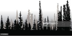 Treeline Up North Vector Art | Getty Images