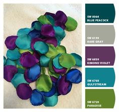 Paint colors from ColorSnap by Sherwin-Williams ideas master color schemes teal Color Schemes Colour Palettes, Room Color Schemes, Colour Pallette, Room Colors, House Colors, Color Combos, Peacock Color Scheme, Peacock Paint Colors, Purple Color Schemes