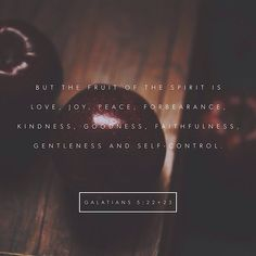 """But the fruit of the Spirit is love, joy, peace, longsuffering, kindness, goodness, faithfulness, meekness, self-control; against such there is no law."" ‭‭Galatians‬ ‭5:22-23‬ ‭ASV‬‬ http://bible.com/12/gal.5.22-23.asv"