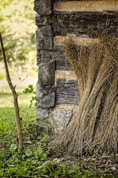 Flax stems bundled after harvesting leaning against an century log house. Country Charm, Rustic Charm, Country Life, Country Living, Country Roads, Cabins And Cottages, Log Cabins, Rama Seca, Crow's Nest