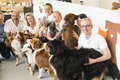 het Wellopet-team:dierenartsen, trimmers, gedragstherapeuten voor jouw hond/kat