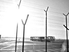 Bus by Aneta Maria Photos