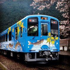 錦川鉄道NT3000系車両 運転体験(岩国市)