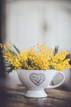 Coventry modern home velvet bouquet