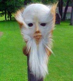 Assquatch is de nobele kunst om een gezicht te maken van een opgezette hertenkont.