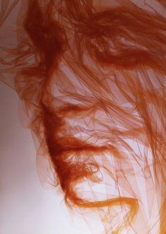 Benjamin Shine - arte com tule