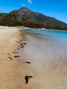 Hazards Beach, Tasmania, Australia