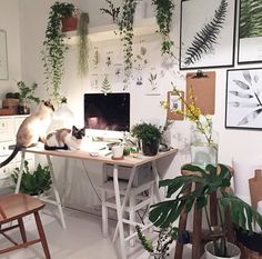 Home Office Space Design-Ideen – # Check more at pflanzen.frisurde… Home Office Space Design-Ideen – # Check more at pflanzen. Office Space Design, Home Office Space, Home Office Decor, Home Decor, Office Ideas, Office Designs, Workspace Design, Office Spaces, Small Office