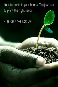"""Your future is in your hand's. You just have to plant the right seeds!""        ~Master Chao Kok Sui~"