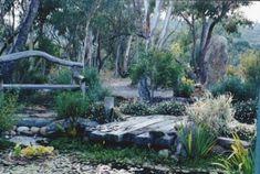 Build a healing garden with Australian native plants - Modern Design Australian Garden Design, Australian Native Garden, Australian Plants, Australian Bush, Modern Landscaping, Backyard Landscaping, Landscaping Ideas, Bush Garden, Garden Online