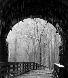 Image result for winter pictures of bridges