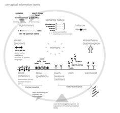 Figure 3. Perceptual information facets