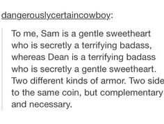 ''To me, Sam Winchester is a gentle sweetheart who is secretly a terrifying badass, whereas Dean is a terrifying badass who is secretly a gentle sweetheart. Two different kinds of armor.'' SO TRUE!! / Supernatural