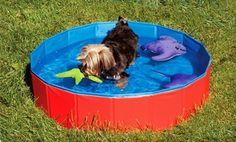 Groupon - SPOT Cool Pool for Dogs. Free Shipping and Returns. in Online Deal. Groupon deal price: $0.25